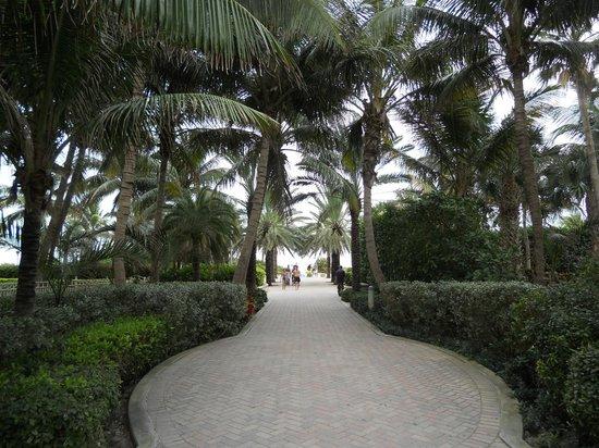 Hotel Eva: accès à la plage