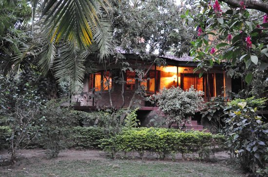 Moyoni Lodge : la chambre vue du jardin