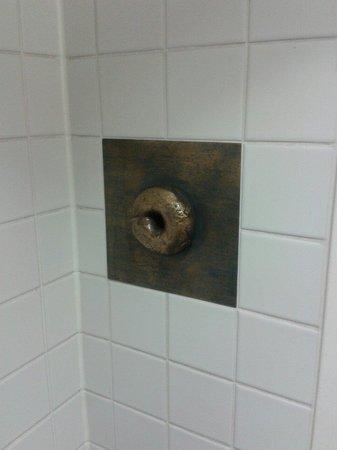 Bagel Brothers: Auf der Brothers Toilette