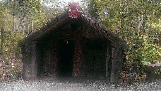 Te Puia: Traditional Maori housing.