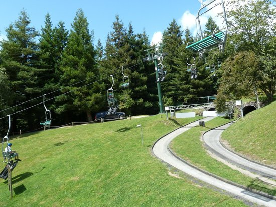 Skyline Rotorua: View of chairlift and luge track