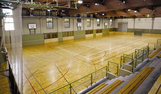 JUFA Hotel Gnas - Sport-Resort : Sports hall