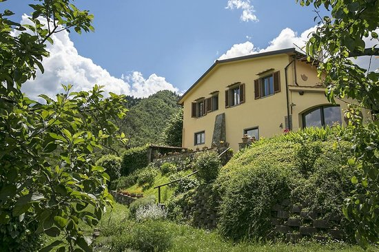 Porcigliano Bed and Breakfast: the house from the garden