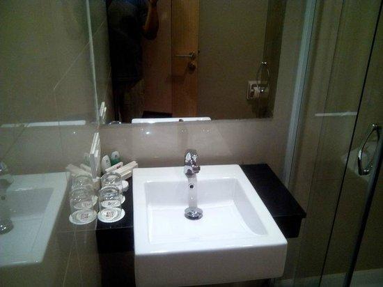 Biz Hotel: Basin