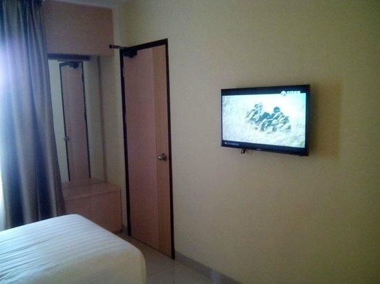 Biz Hotel: TV