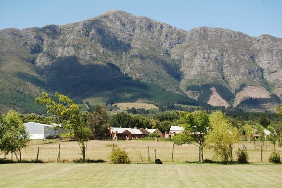 Reeden Lodge: View from grounds