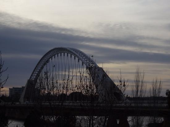 Puente de Lusitania: Desde la distancia.