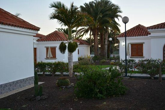 Our bungalows bild fr n eo suite hotel jardin dorado for Bungalows jardin dorado gran canaria