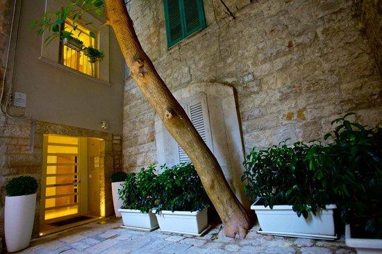 Fabris Palace: ingresso- corte