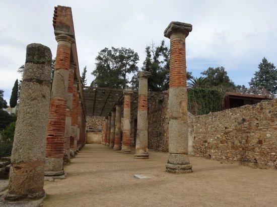 Anfiteatro Romano de Merida: Columnas.