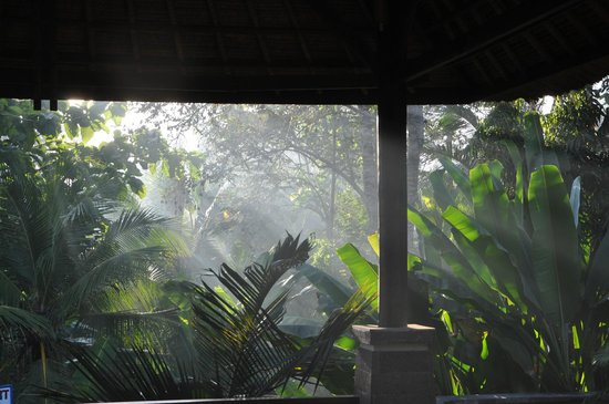 Medewi Bay Retreat: Early morning view from villa