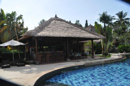 Medewi Bay Retreat: Pool area