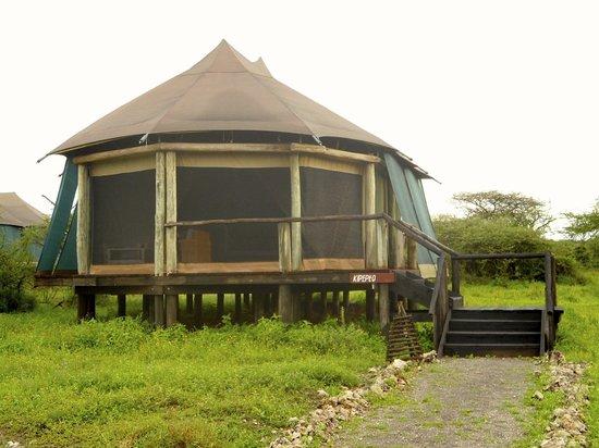 "Masek Tented Camp: esterno tenda n.3 ""kipepeo"" (farfalla)"