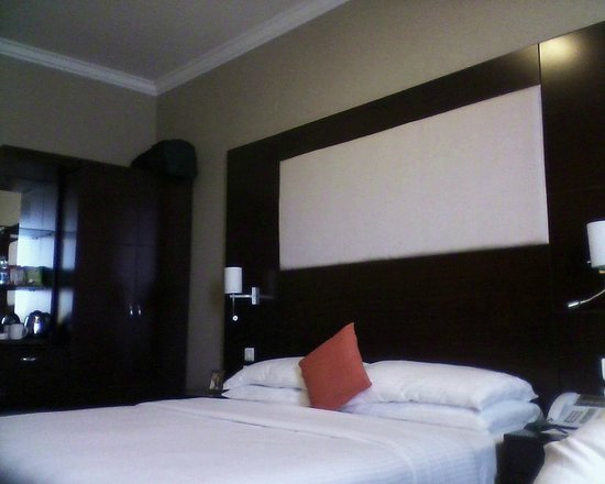 The Metroplace Hotels: ROOM PIC