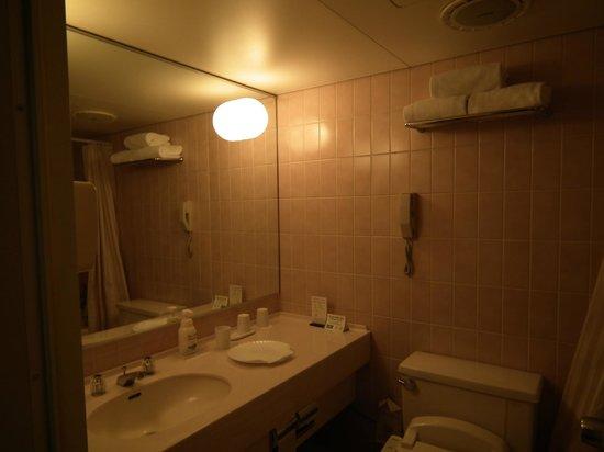 Narita Tobu Hotel Air Port : Baño espacioso y bien equipado.