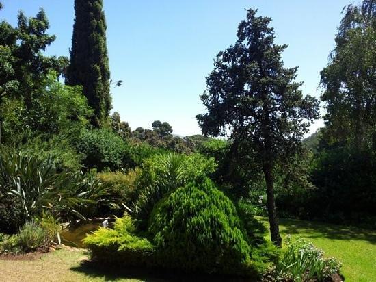 Uitzicht op de tuin vanaf het terras bij Delheim
