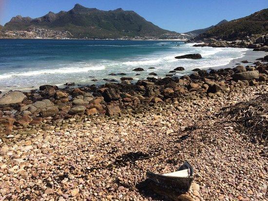 Tintswalo Atlantic: Houtbay View