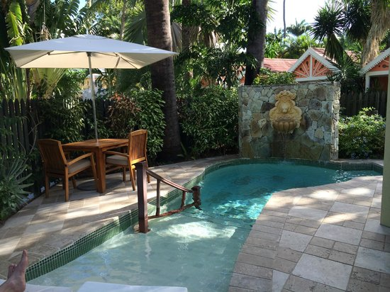 Sandals Grande Antigua Resort & Spa : Plunge Pool