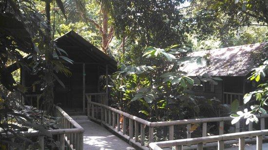 Aninga Lodge: Así son las habitaciones del hotel