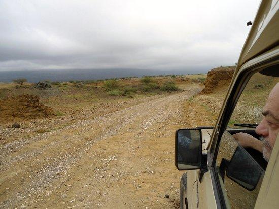 Lake Natron Halisi Camp: strada dal Natron al Serengeti