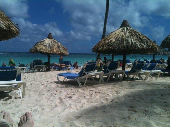 Luxury Bahia Principe Ambar Blue Don Pablo Collection : l'incroyable plage avec son eau turquoise et son sable incroyablement propre