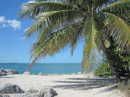 Fort Zachary Taylor Historic State Park : Fort Zachary Beach, Key West