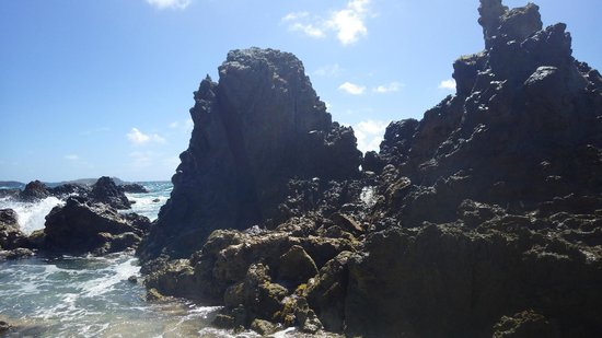 Virgin Islands Ecotours : Limestone rock where the blow hole is