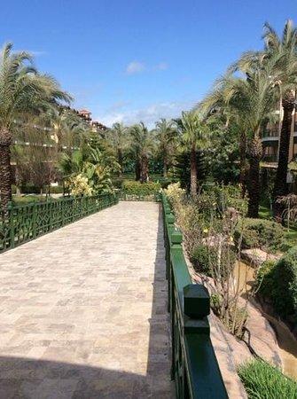 Crystal Paraiso Verde Resort & Spa: Walk between accommodation blocks