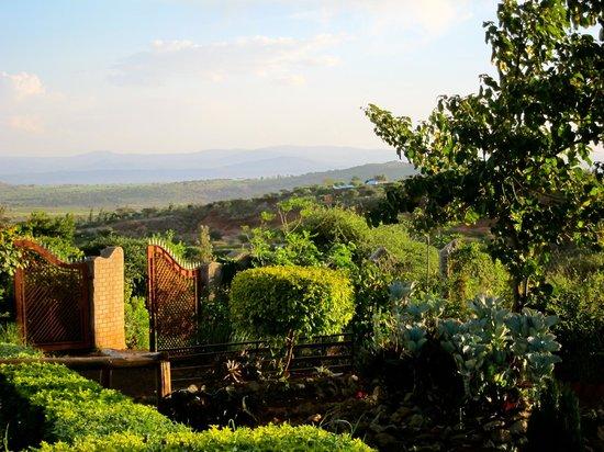 Umali Lodge: View of the surrounding farmland