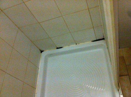 sporcizia e puzza nel bagno - Picture of Hotel di Porta Romana ...