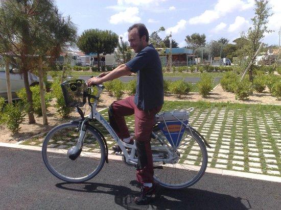 Holland Bikes : Ready to go!