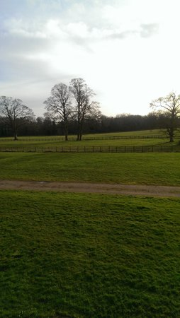 De Vere Horwood Estate: The view from my window