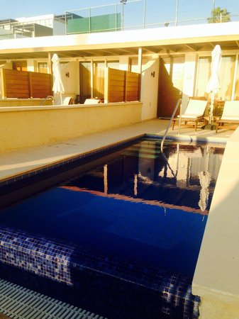 Alexander The Great Beach Hotel : Private pool cabana