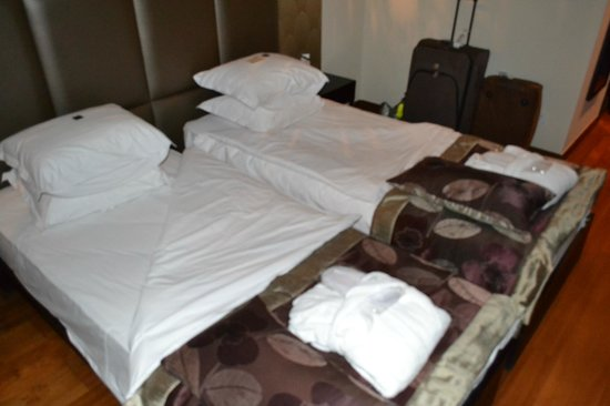 Continental Hotel Budapest : Room 510