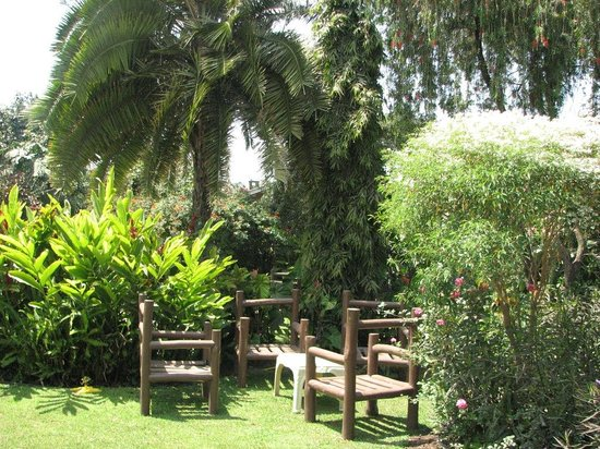 Karibu Heritage House : A place to relax and unwind at any time of the day. the lounge adjoins the beautiful garden with