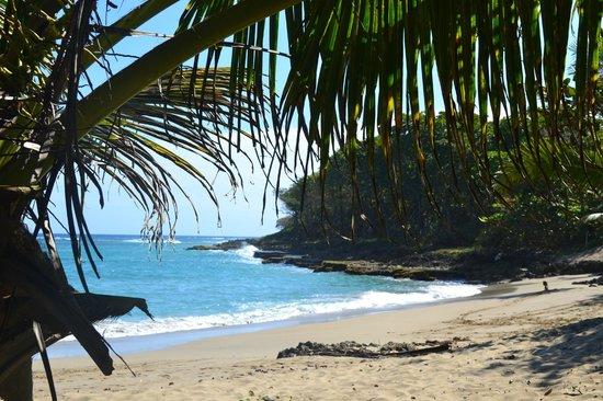 Natura Cabana Boutique Hotel & SPA: beach