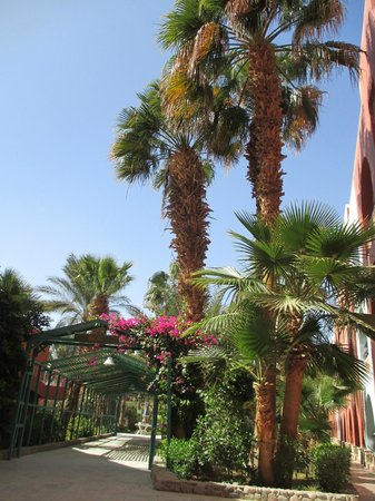 Arabia Azur Resort: at  the hotel