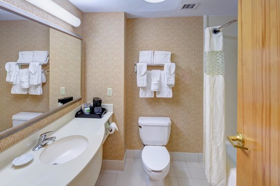 Hampton Inn & Suites Augusta West: Guest Room Bath
