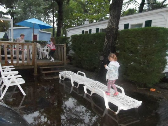 Camping le Vieux Port : my 5 yr old daughter trying to access our mobile