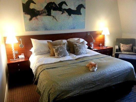 Rookery Hall Hotel & Spa: Room 401