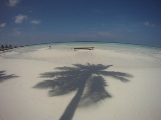 Reveries Diving Village: Hotel Beach