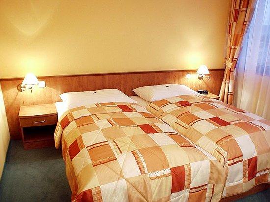 IBS Hotel Vladimir: Executive room