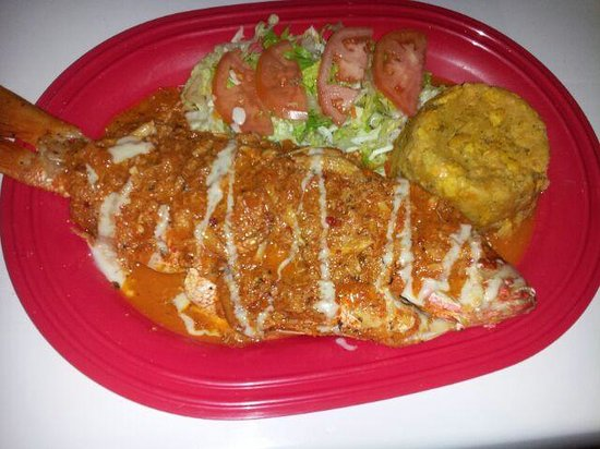 El Nuevo Acuario: Steamed Red Snapper on a Beer & Wine Reduction Sauce