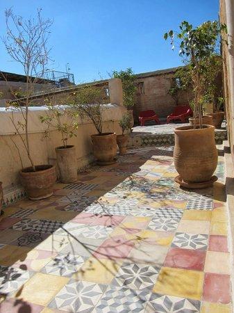 Riad Tizwa : rooftop