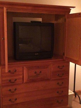 Torian Plum Condominiums: TV in bedroom