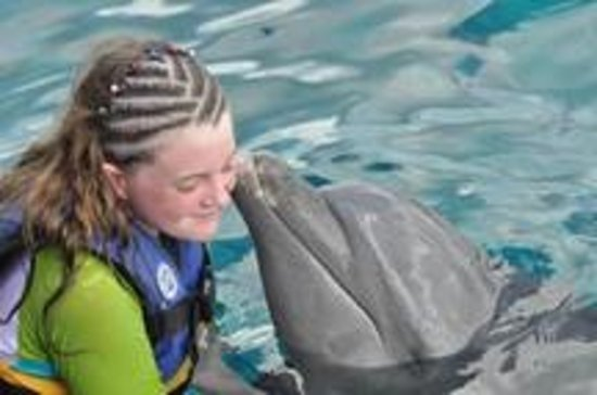Dolphin Discovery Cozumel : Dolphin kiss (all of these were purchased)