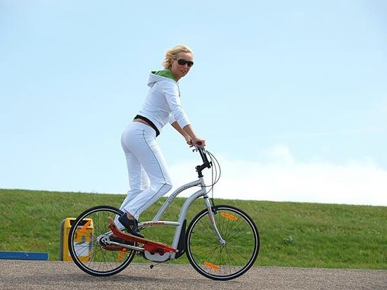 Holland Bikes : L'incontournable BIKESTEPPER