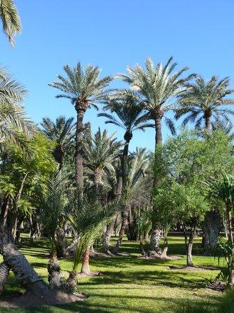 Cyber Parc Arsat Moulay Abdeslam : парк