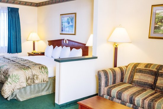 GuestHouse Inn & Suites Kelso/Longview: Single King with sleeper sofa