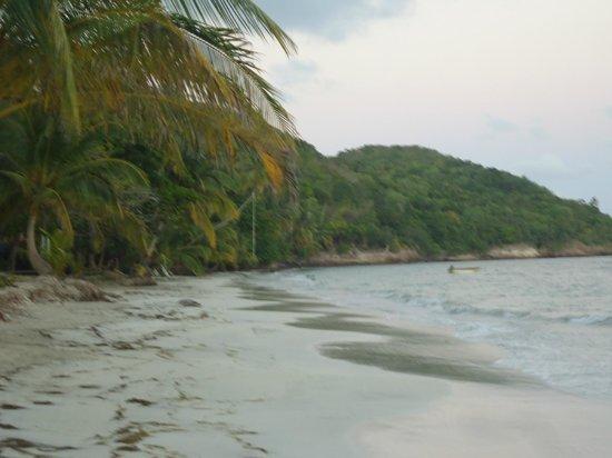 Cabanas Relax en Providencia isla: Playa